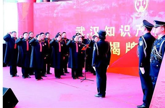 武汉知识产权审判庭成立
