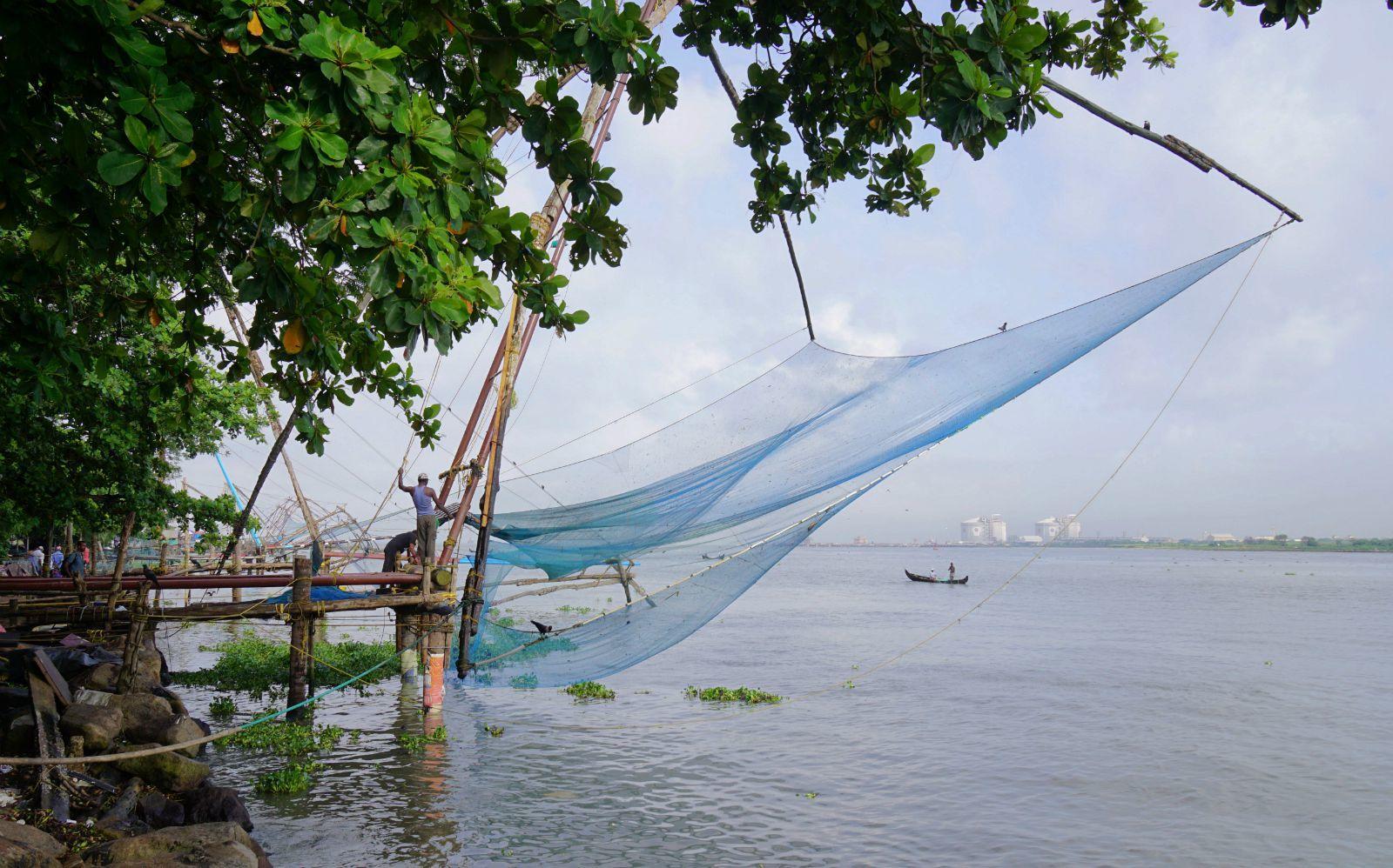 渔网商标注册属于第几类?