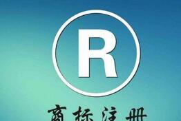 10月1日施行!上海发布《知识产权评议技术导则》地方标准