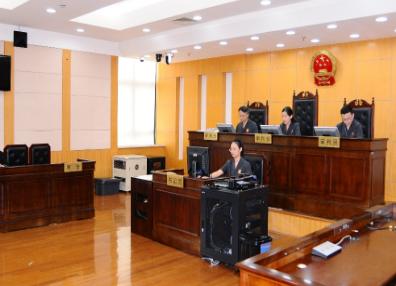 300万!上海首例知识产权侵权惩罚性赔偿案件一审落槌