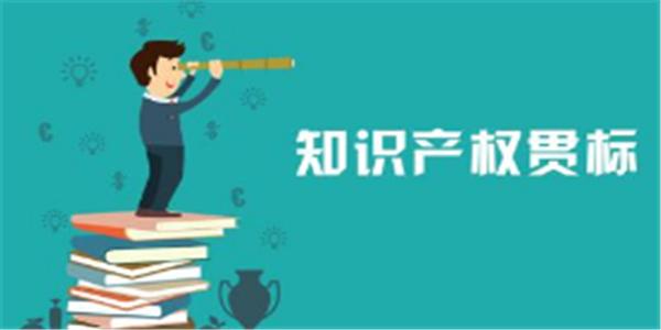 大渡口區知識產權貫標獎勵