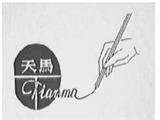 福建省邵武市天马复写纸商标