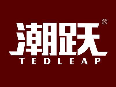 潮跃 TEDLEAP